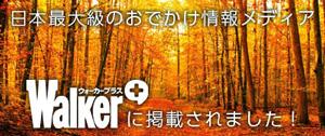 ウォーカープラス・紅葉特集